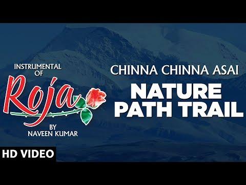 Roja - Nature Path Trail    Chinna Chinna Asai    Instrumental Recreation of Roja By Naveen Kumar