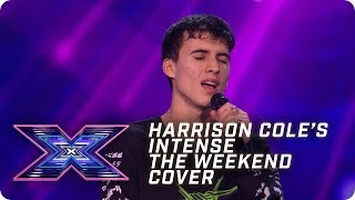 Harrison Cole's INTENSE The Weeknd cover | X Factor: The Band | Arena Auditions
