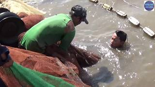 Bao lưới trúng bầy cá khủng ở mé biển Kiên Giang/catch fish in vietnam