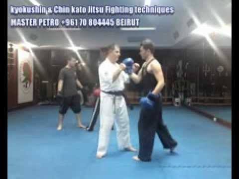 kiyuu-kyokushin and chin kato jitsu fighting techniques vol 3 Master Petro Panayoti.wmv.flv Image 1