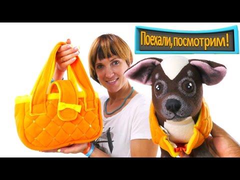 Играем в Магазин - Игрушки для кошки - Едем в ЗООМАГАЗИН