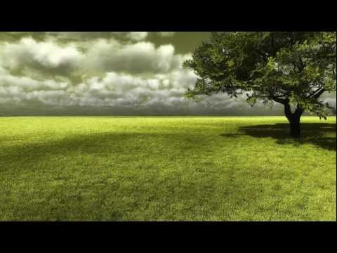 Pink Floyd - High Hopes (the Division Bell) video