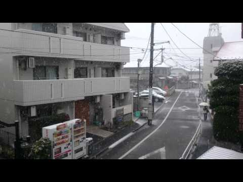 first snowfall of the year in Tokyo