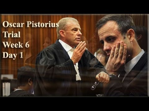 Oscar Pistorius Trial: Monday 14 April 2014, Session 2