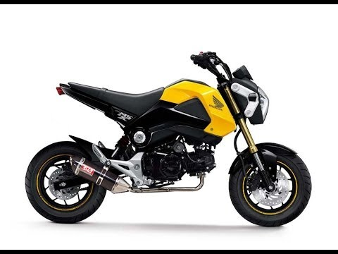 Honda Grom/Msx 125 review part 2