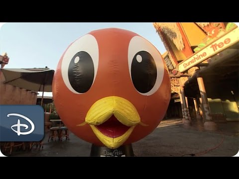 Disney Parks Blog Team Unveils Orange Bird Photo Opp | Walt Disney World