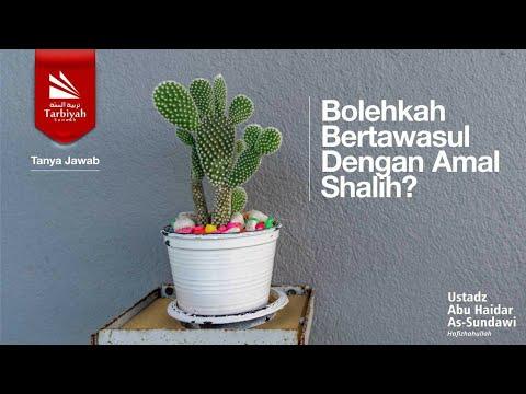 Tanya Jawab | Bolehkah Bertawasul Dengan Amal Shalih? - Ustadz Abu Haidar As Sundawy