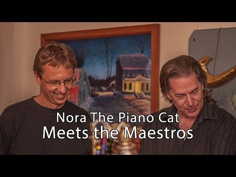 Nora The Piano Cat Meets the Maestros...