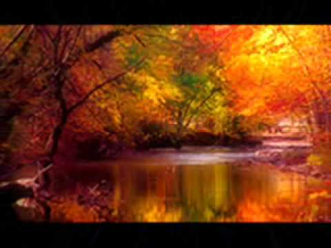 VAN MORRISON _ WHEN THE LEAVES COME FALLING DOWN.