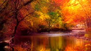 Watch Van Morrison When The Leaves Come Falling Down video