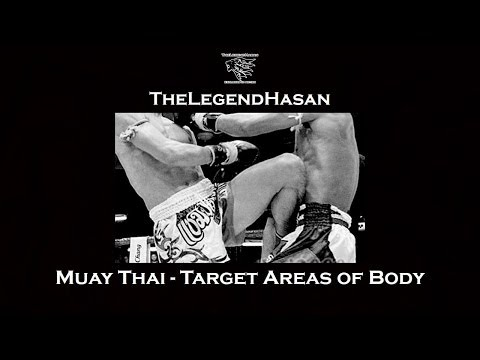 Muay Thai - Target Areas of Body Fists Feet Knees and Elbows (Full HD) Image 1