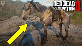 ULTRA RAREST HORSES IN Red Dead Redemption 2 (RDR 2 rare horse location)