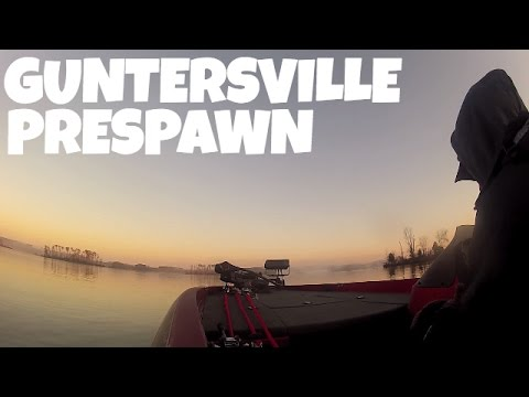 Lake Guntersville Bass Fishing
