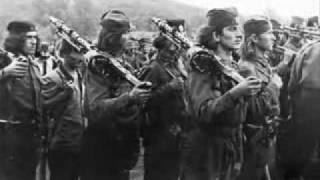 Thank you Serbian Chetniks American Video
