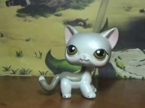 LPS: Моя коллекция стоячек /My collection short hair cat