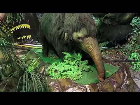 Древние чудовища / Динозавры Юрского Периода / Динопарк Сочи