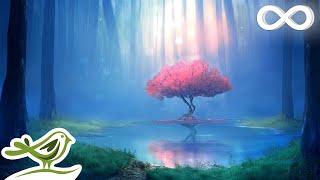Deep Relaxing Music - Sleep Music, Meditation Music, Ambient Music