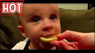 Video Hài Hước: Em bé hài hước nhất thế giới (không thể  không cười)