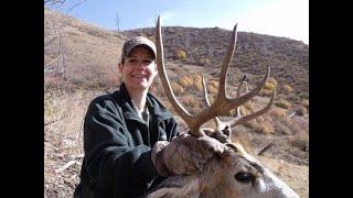 WOMAN WITH RIFLE, SHOOTS BIG MULE DEER BUCK: