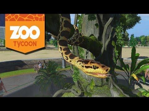 Sucuri Amarela, Lêmure Varecia e Tigre Malaio : Zoo Tycoon #9 (Mega Zoológico)