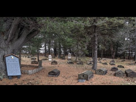 4 indian burial ground ghost stories...