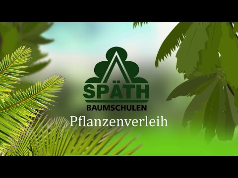Pflanzenvermietung Späthsche Baumschulen