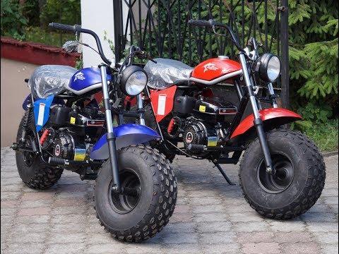 JESIENNE DOCIERANIE :D MINIBIKE MB200 Wyśmierzyce GX200 6,5KM TrailMaster
