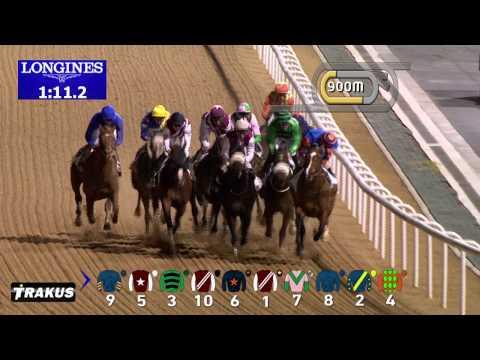 Vidéo de la course PMU MINA AL HAMRIYA
