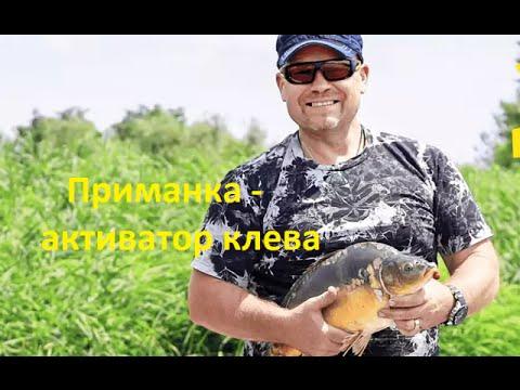 видео рыбалки с активатором клева