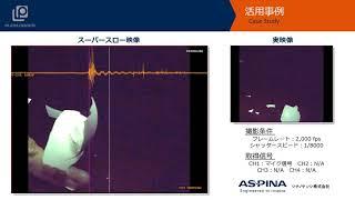 ハイスピードカメラ+データロガー「殻を割る」