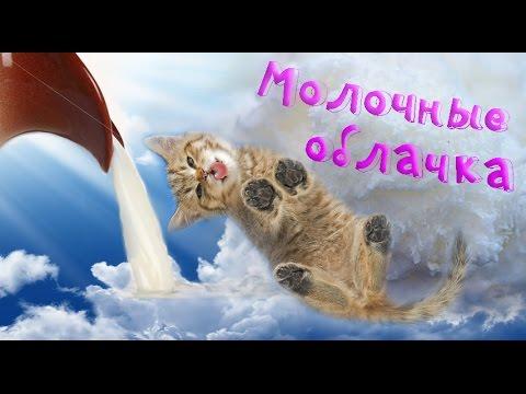 ФИТНЕС РЕЦЕПТЫ ஐ