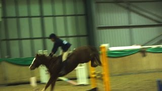 Accumulator and 2'9 [85cm] New Year Show Jumping