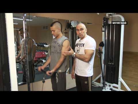 Тренировки в спортзале для начинающих. PROФИТ 3