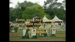 Y-D HORSES PENSIONS : Ecurie de propriétaires, pension chevaux Gironde