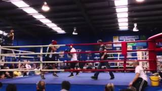 Download EFC 5 Training Fight at Hammers Gym #7 3Gp Mp4