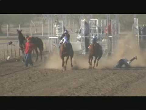 carreras de caballos en pitiquito son el 15 de nov el teibolero y la oyuki