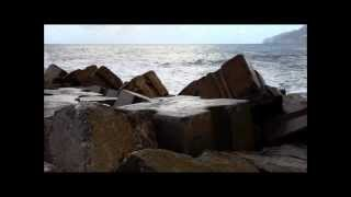 Watch Sea  Cake Two Dolphins video