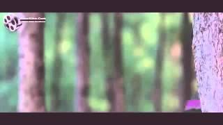 Bappy & mahi/ অণেক দামে কেনা , ছবির গান,Sahidullah bijoy(3)