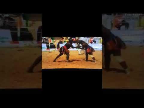 Lutte Traditionnelle  du Niger (Tillabery 2019) Combat 1/8 de finale Tassiou Ibrahim Vs Saley Daouda thumbnail