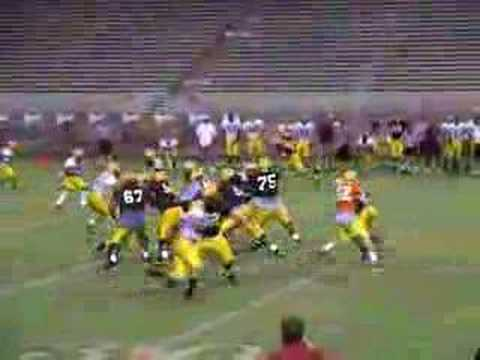 Rudy Carpenter to Ryan Torain in Arizona State's 2006 team scrimmage.