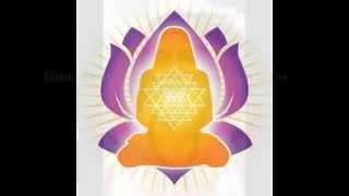Paramahamsa Hariharananda Giri  I bow to you!