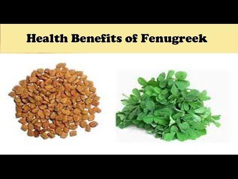 Health Benefits of Fenugreek (Methi) in Hindi | Fenugreek for Diabetes, skin, Hair & Heart