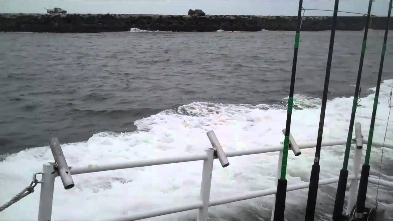 541 999 9282 florence oregon gets new fishing charter