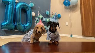 Crusoe's LIVE Birthday Party!