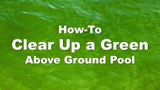 how to clean an above ground pool with algae