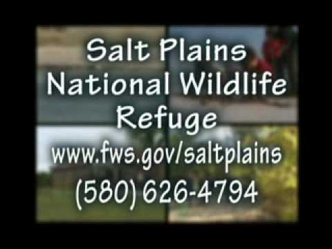 A mini-video of a wounderful tourism destination in northwest Oklahoma. The Great Salt Plains National Wildlife Refuge is located in Alfalfa County just NE of Enid Oklahoma.