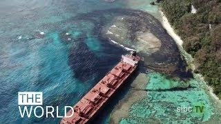 Oil spill disaster near world heritage site 'irreversible' | ABC News