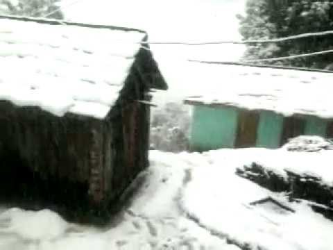 Live Snow Fall 2013  in My Home by Gagan Singh Thakur from Bagliyara  73073 92492