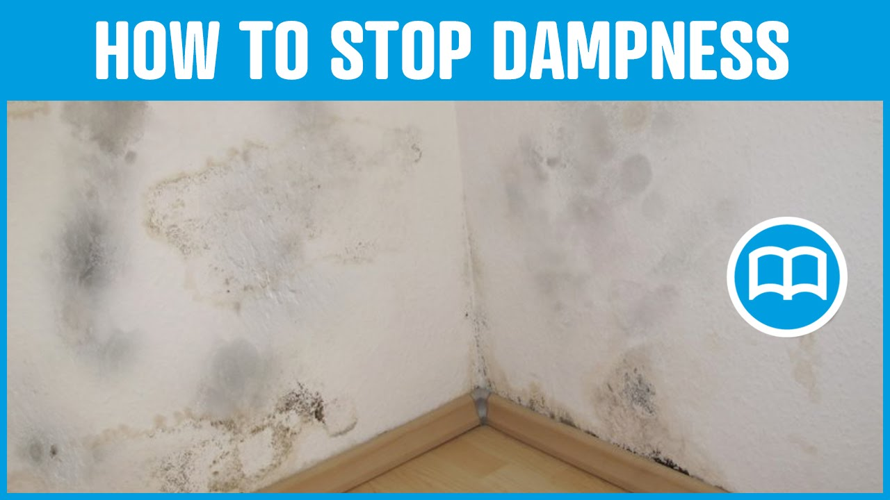 Damp Proof Paint Bathrooms Damp Basement Cures And Prevents Dampness Youtube