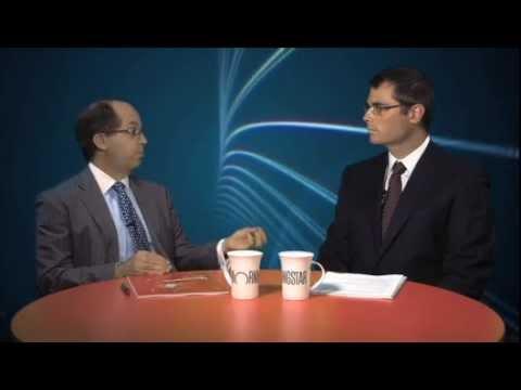Determining factors in asset allocation